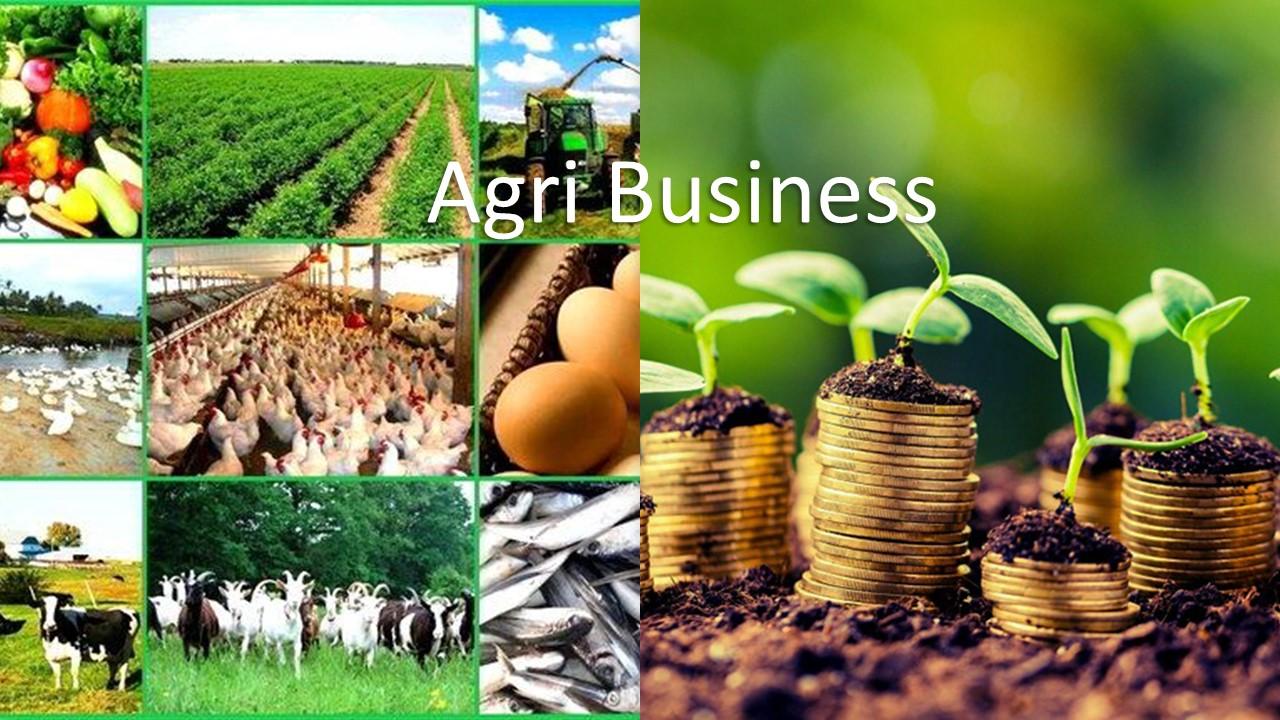 Cộng tác viên bán hàng thực phẩm, nông sản